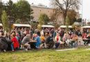 Villányi vörösbor fesztivál biztosítása